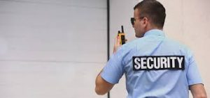 security services india